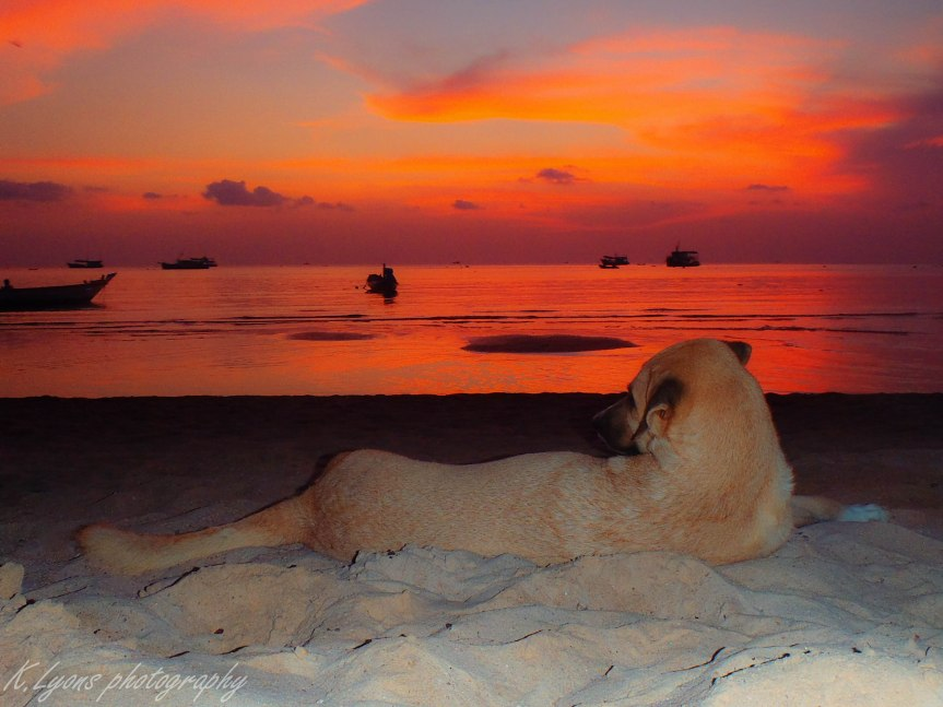 Sunset at Koh Tao