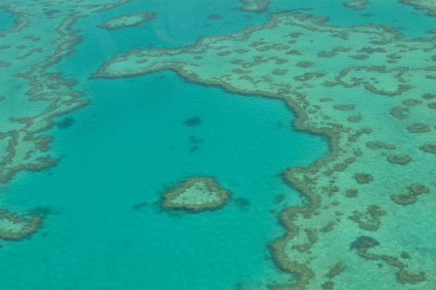 Australia: Reef and Whitehaven Sea Plane Scenic Tour – A PhotoDiary