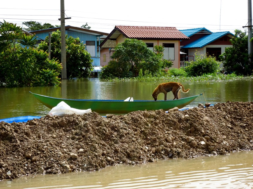 Thailand: Living in a flood disaster zone