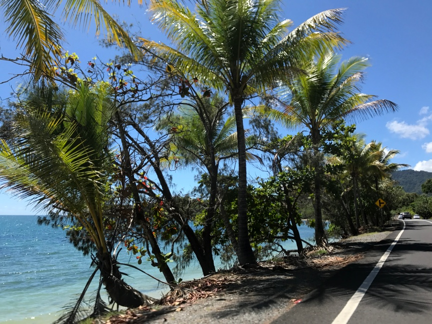Welcome to Tropical North Queensland's Great OceanRoad.